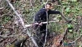 Yavru ayıyı vuran ve köpeklerine işkence yaptıran avcı serbest bırakıldı