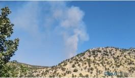 Gabar'da orman yangını