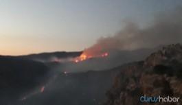 HDP'li Şırnak milletvekilleri: Yangınların sebebi güvenlikçi politikalar