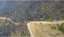 Siirt'te 20 hektarlık alan yandı
