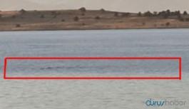 Van Gölü'nde yine 'canavar' iddiası: Komik gelirdi ama artık inandık