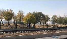 Tepkiler üzerine durdurulmuştu! Diyarbakır'ı ikiye bölecek duvarın yapımına yeniden başlandı
