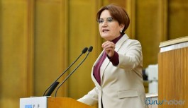 Akşener: Tarım Bakanı'nın da Tiktok'ta bir düetle istifa etmesini bekliyoruz