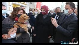 Babacan: Sayın Erdoğan biraz yavaş, Pelikan kaza yapıyor