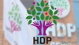 HDP'li Belediye Eşbaşkanı gözaltına alındı