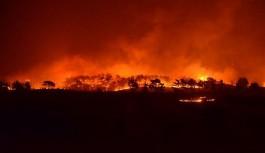 Manavgat'taki yangınlara soruşturma